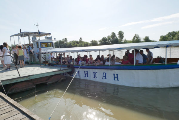 ANGEL'S WINGS MOLLUSC IN THE DANUBE DELTA AND STRONG LINKAGE OF JOINT BLACK SEA SURVEYS TO JOINT DANUBE SURVEYS IN UKRAINE