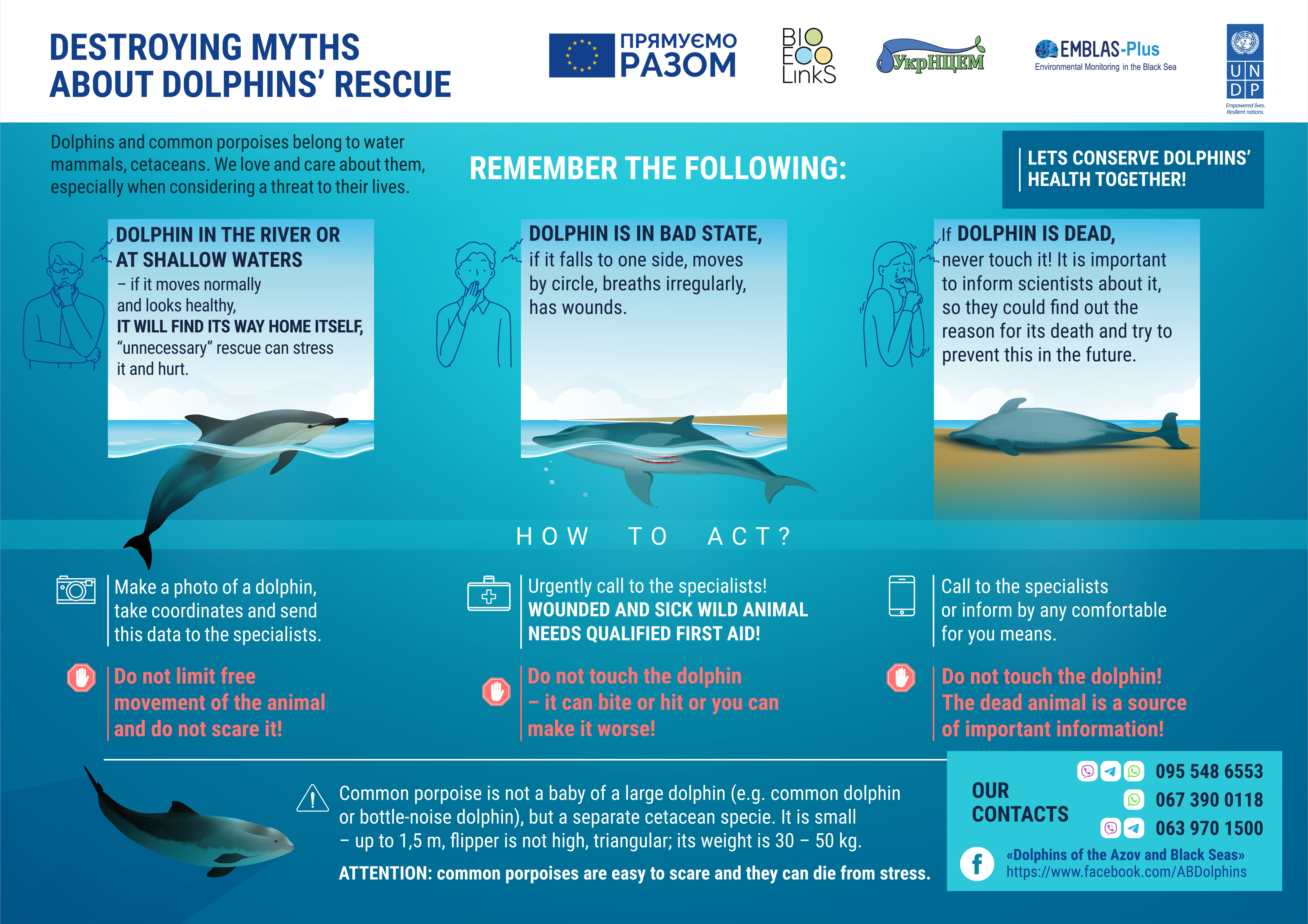 DESTROYING MYTHS ABOUT THE DOLPHINS' RESCUE