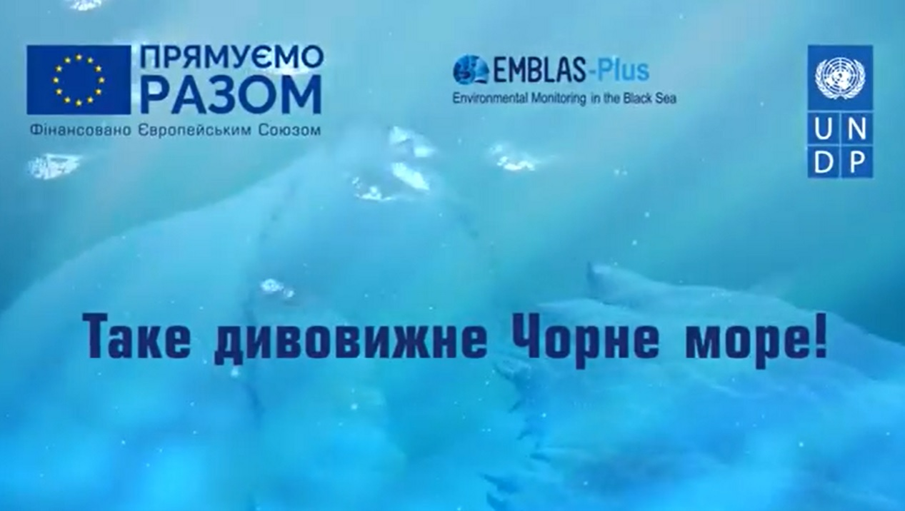 "«Amazing Black Sea"" – series of short video about the underwater life to the Black Sea Day"