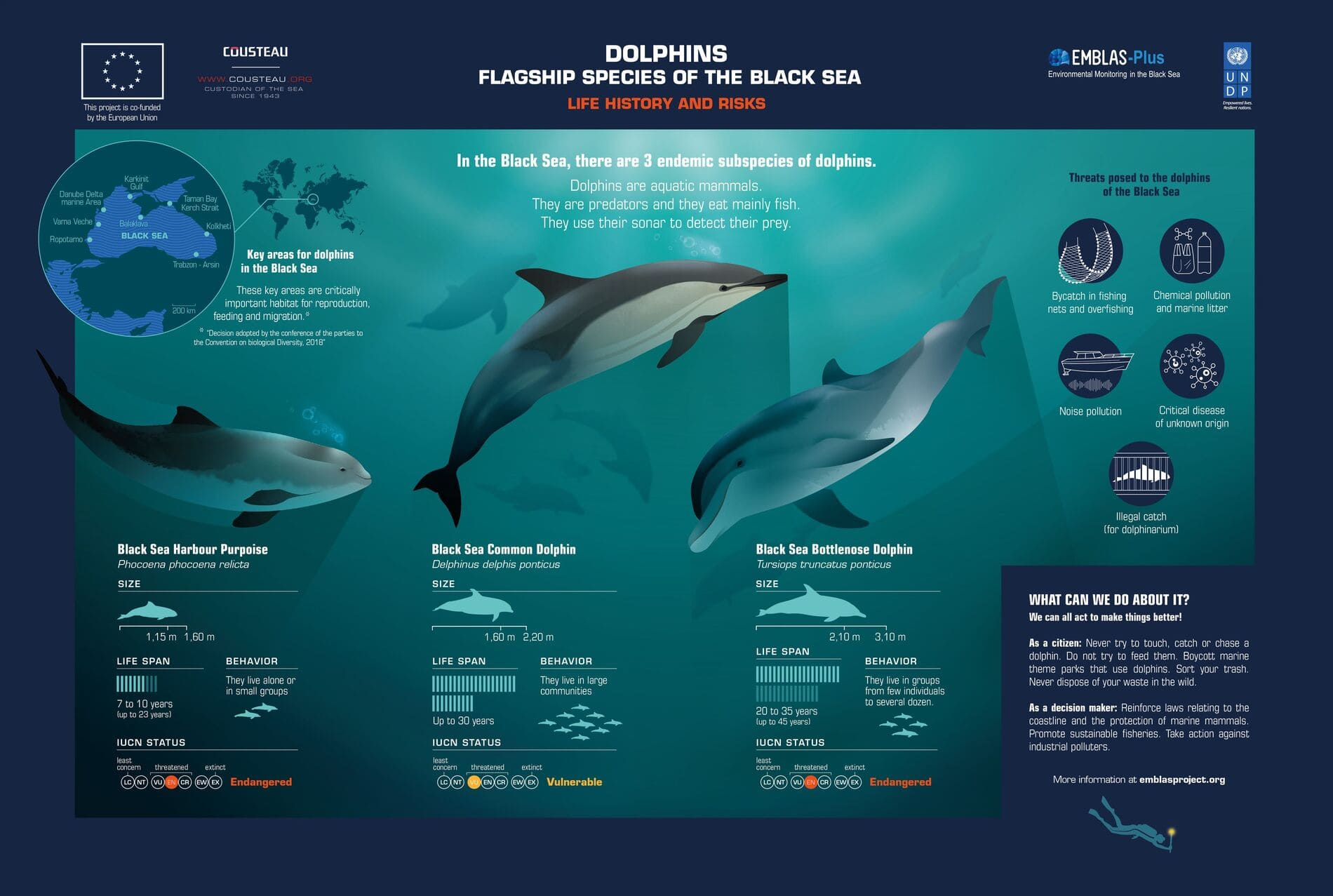 """COLLECTION OF INFOGRAPHICS """"CALL OF THE BLACK SEA"""""""