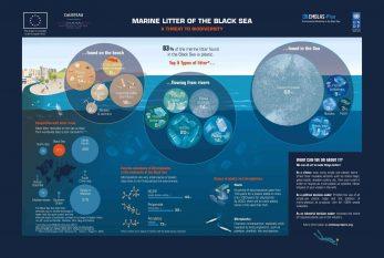 4.Marine Litter