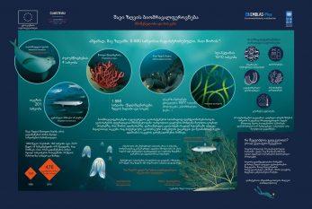 Georgian.-Biodiversity-of-the-Black-Sea_page-0001